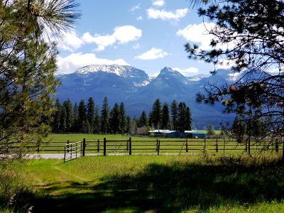 Polson Single Family Home For Sale: 40497 Farm Road