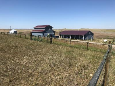 Fort Shaw, Simms, Sun River, Augusta, Brady, Conrad, Dupuyer, Valier, Bynum, Choteau, Dutton, Fairfield, Power Single Family Home For Sale: 600 7th Lane NE Lane North East