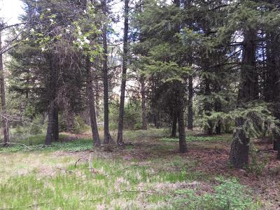 Sanders County Residential Lots & Land For Sale: Nka Mt Highway 135