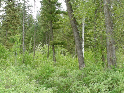 Lincoln County Residential Lots & Land For Sale: Lot 3b Hwy 37