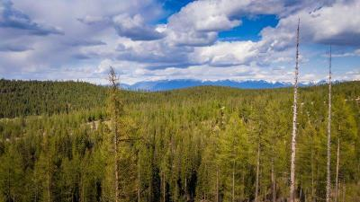 Kalispell Residential Lots & Land For Sale: Nhn Patrick Creek Road