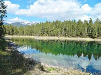 Kalispell Residential Lots & Land For Sale: 115 Swimming Lake Court