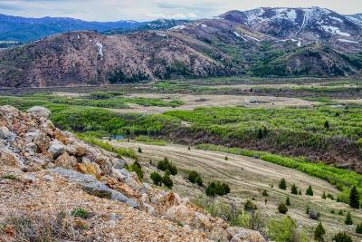 Dell, Anaconda, Wise River, Butte Residential Lots & Land For Sale: Lot 66 Aspen Hills Trail