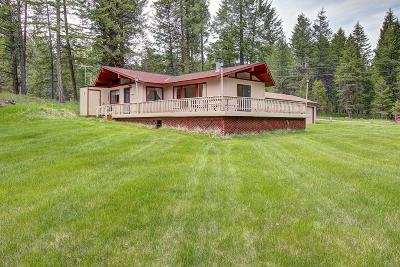Lake County Single Family Home For Sale: 37041 Narrows Road