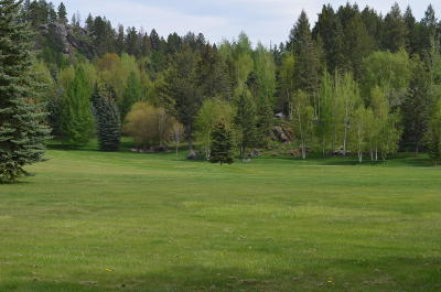 Bigfork Residential Lots & Land For Sale: 216 Bridger Drive