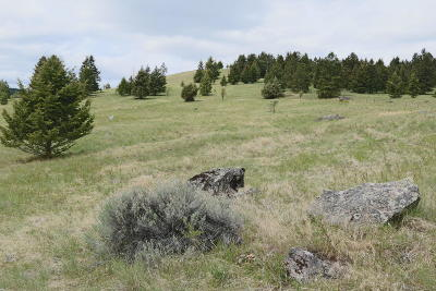 Kalispell Residential Lots & Land For Sale: 160 Brandy Lane