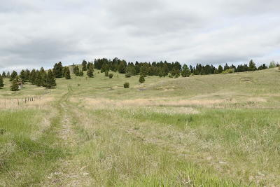 Kalispell Residential Lots & Land For Sale: 150 Brandy Lane