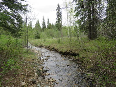 Lincoln County Residential Lots & Land For Sale: 35875 Yaak River Road