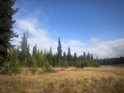 Lincoln County Residential Lots & Land For Sale: 24 Vinal Lake Road