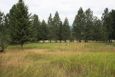 Residential Lots & Land For Sale: 2925 Terrace Drive
