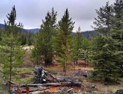 Lincoln County Residential Lots & Land For Sale: Nhn No Name