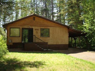 Flathead County Single Family Home For Sale: 172 Glacier Avenue