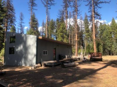 Seeley Lake Single Family Home For Sale: 1804 Boy Scout Road