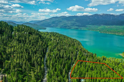 Whitefish Residential Lots & Land For Sale: 1335 Lion Mountain Drive