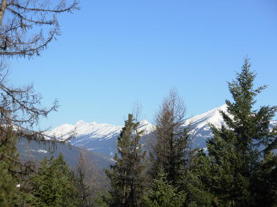 Seely Lake, Seeley Lake Residential Lots & Land For Sale: 690 Stagecoach Drive