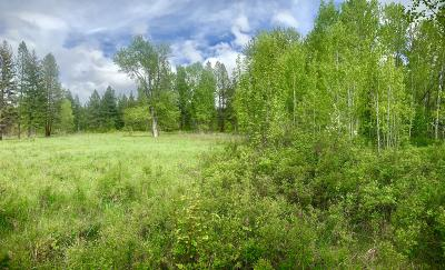 Arlee MT Residential Lots & Land Under Contract Taking Back-Up : $60,000