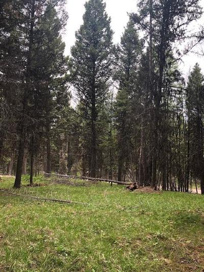 Seely Lake, Seeley Lake Residential Lots & Land For Sale: 904 Grandview Drive