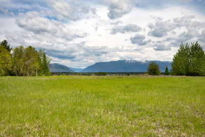 Whitefish Residential Lots & Land For Sale: 239 Vista Drive