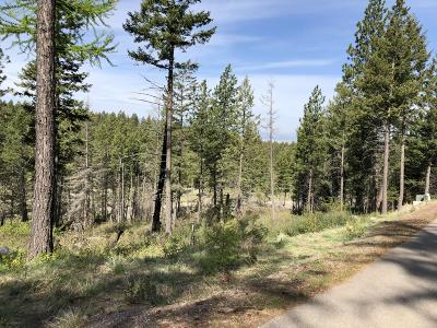 Bigfork Residential Lots & Land For Sale: 178 Buckaroo Trail