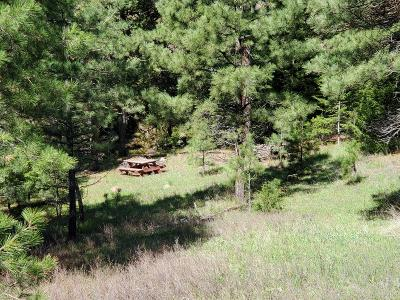 Cascade Residential Lots & Land For Sale: Nhn Upper Andy Creek Lane
