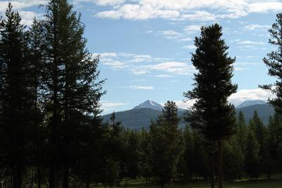 Condon, Potomac, Seeley Lake Residential Lots & Land For Sale: Boy Scout Road