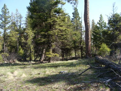 Kalispell Residential Lots & Land For Sale: Nhn Copper Rd