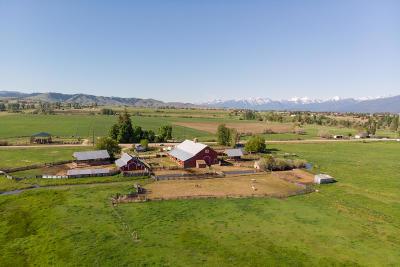 Ravalli County Single Family Home For Sale: 717 Duus Lane