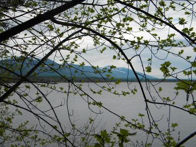 Lake County Residential Lots & Land For Sale: Nka Geri Lane