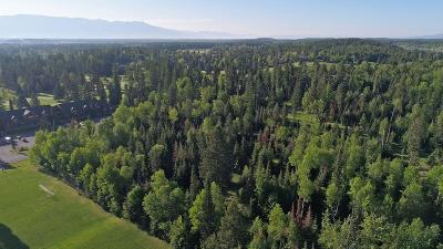 Whitefish Residential Lots & Land For Sale: Nhn Fairway Drive