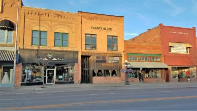 Flathead County Commercial For Sale: 221 S Main Street