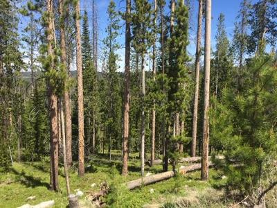 Dell, Anaconda, Wise River, Butte Residential Lots & Land For Sale: Lot 3 Minniehaha