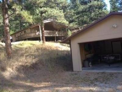 Cascade, Craig, Wolf Creek Single Family Home Under Contract Taking Back-Up : 143 Andy Creek Lane