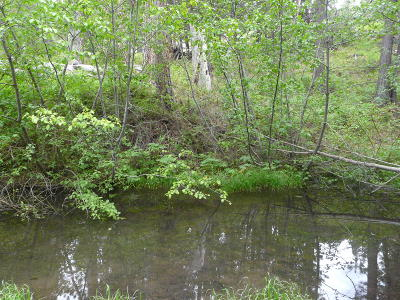 Residential Lots & Land For Sale: 3465 French Creek Road