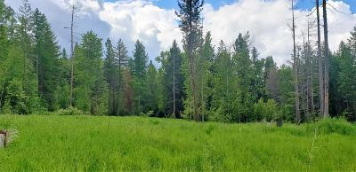 Ronan Residential Lots & Land For Sale: 32557 Snyder Hill Lane