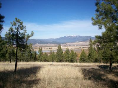 Sanders County Residential Lots & Land For Sale: River Road West