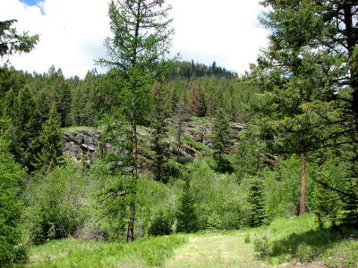 Kila Residential Lots & Land Under Contract Taking Back-Up : 1710 Browns Meadow Road