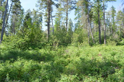 Whitefish Residential Lots & Land For Sale: 244 Hare Trail