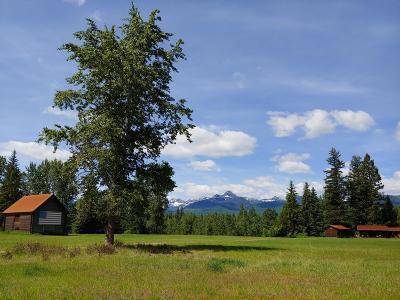 Condon, Potomac, Seeley Lake Single Family Home For Sale: 7395 Hwy 83