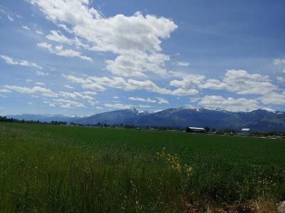 Corvallis Residential Lots & Land For Sale: 928 Doty Lane