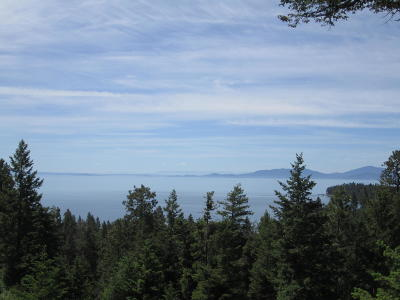 Lake County Residential Lots & Land For Sale: Nhn Mt Hwy 35 & Redgate Drive