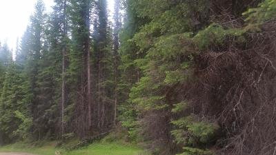 Lincoln County Residential Lots & Land For Sale: Nhn Edna Creek Road