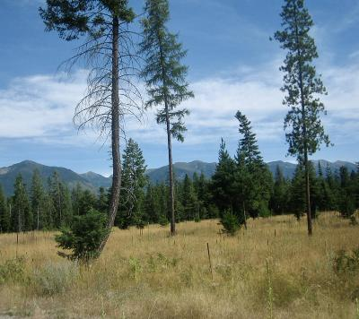 Bigfork Residential Lots & Land Under Contract Taking Back-Up : Nhn Treefarm Trail
