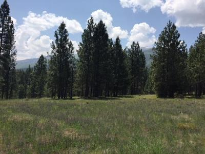 Ravalli County Residential Lots & Land For Sale: 1155 Megan Trail