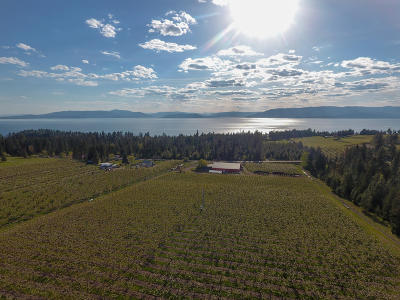 Flathead County Farm & Ranch For Sale: 23666 Mt-35
