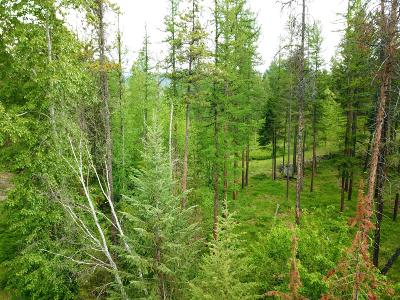 Whitefish Residential Lots & Land For Sale: 1980 Ridge Crest Drive