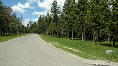 Whitefish Residential Lots & Land For Sale: 143 Hills Lookout Court