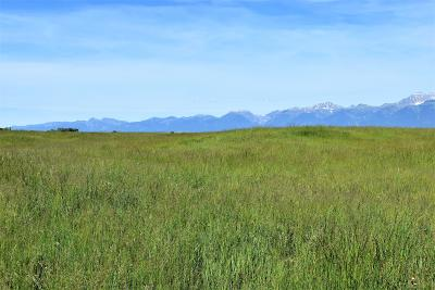 Charlo MT Residential Lots & Land For Sale: $137,000