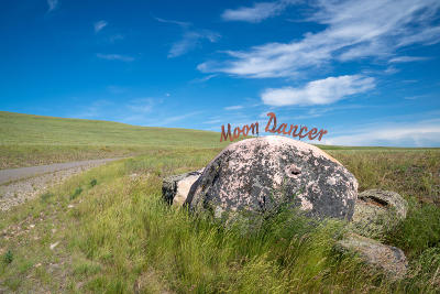 Residential Lots & Land Under Contract Taking Back-Up : 6346 Moon Dancer Cluster
