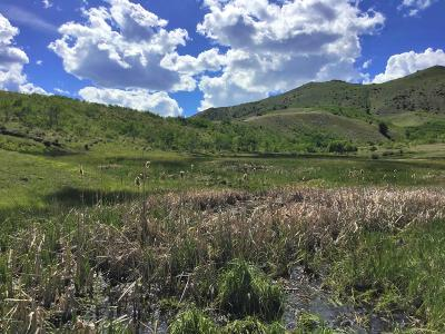 Dell, Anaconda, Wise River, Butte Residential Lots & Land For Sale: Lot 77 Outlaw Trail Aspen Hills