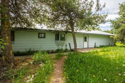 Flathead County Single Family Home For Sale: 420 Terrace Drive
